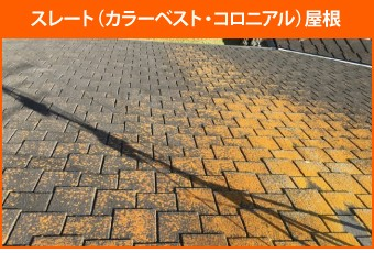 苔・藻・カビなどが繁殖したスレート(カラーベスト・コロニアル)屋根