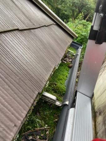 苔が生えた雨樋