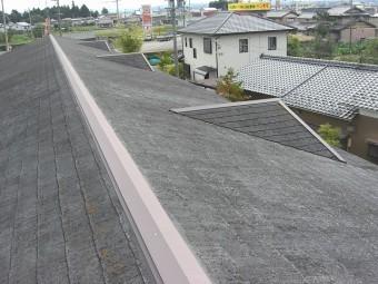 屋根の状態全体