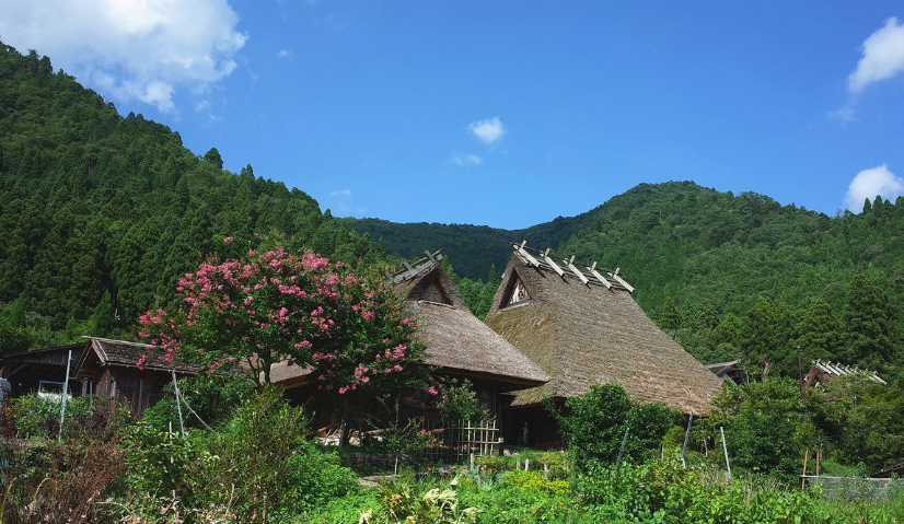 春の茅葺屋根